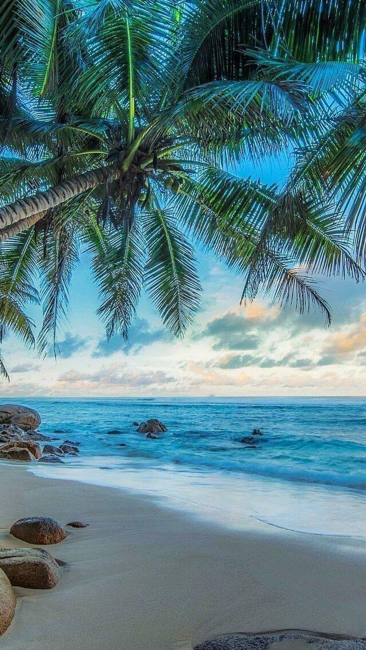 Youreleganceadvisor Com Smartphone Wallpapers Beach Wallpaper Beachy Wallpaper Summer Wallpaper