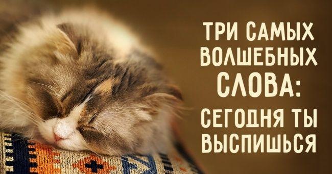 Кчему приводит недостаток сна, икак наконец выспаться