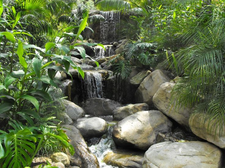 Waterfalls In Gardens As Beauty Design For Your New Homes Waterfalls In Gardens Plus Design Ideas For Small Gardens Image Home Design Suitable In Foxy Home Home Based Business 1 Home Balinese Garden Design Ideas. Modern Garden Design. Fairy Garden Design Ideas. | landideas.xyz
