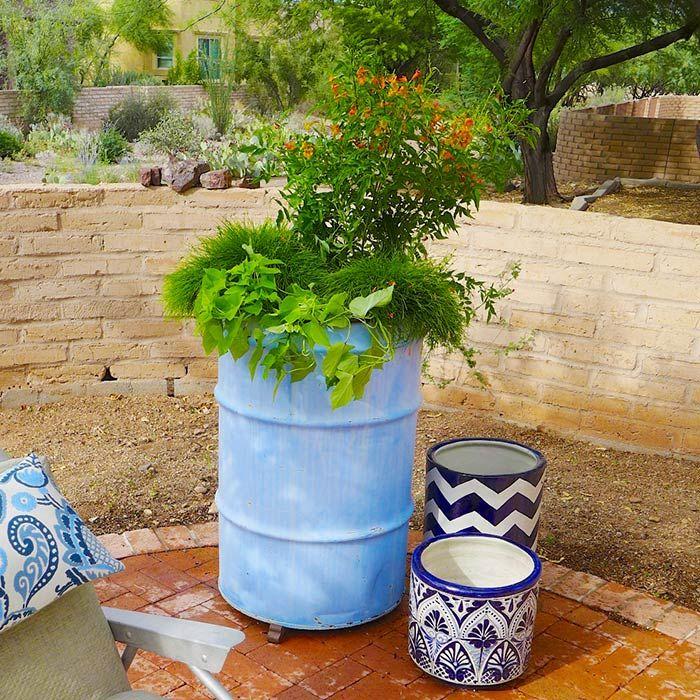 Awesome Desert Gardening: Drumming Up Color For Under $100 Loweu0027s Desert Southwest  Gardening Expert Scott Calhoun. 55 GallonDesert ...