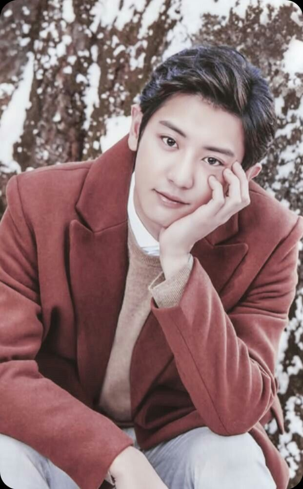 [SCAN] #EXO #CHANYEOL @Nature Republic : LIMITED GIFT - CATALOG