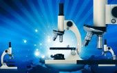 Biology Science Fair Project Ideas