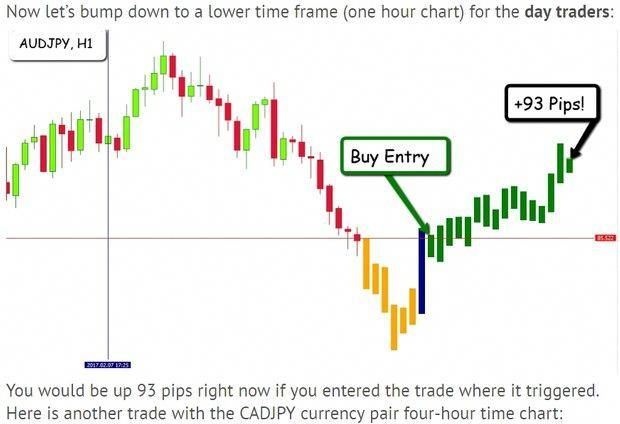 Forex Trader Forextrading Trading Forex Learning