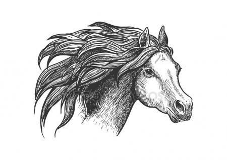 Graceful running appaloosa horse vintage icon — Stockillustration #112388810