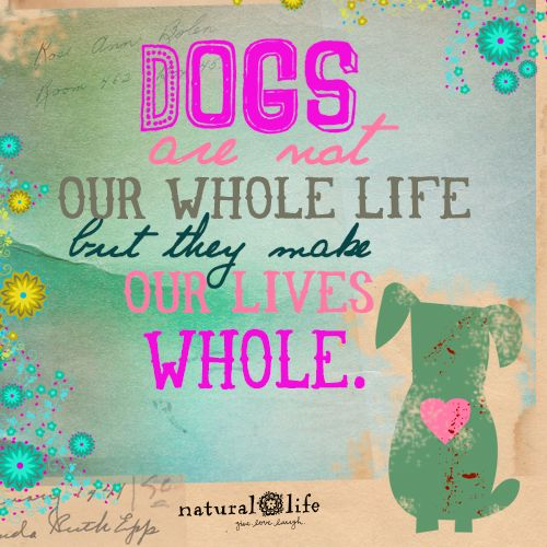Natural Life Quotes: Best 25+ Dog Lover Quotes Ideas On Pinterest