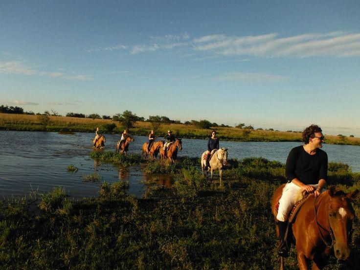Alojándose en La Estancia Rincón del Socorro, en Los #EsterosDelIberá, disfrutará de un entorno 100% #natural y prácticamente virgen, con una gran variedad de #flora y #fauna y #actividades para toda la #familia, como #paseos en #bicicleta, #safaris nocturnos, #caminatas y #cabalgatas > http://goo.gl/4N39nG