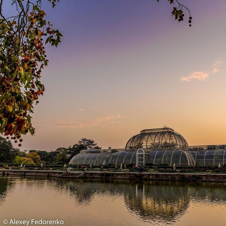 Look - Kew Gardens Victorian palm house during non-Christmas time  #London #LondonDaily #KewGardens #RoyalBotanicGardens #UK #GreatBritain #UnitedKingdom #travel #photooftheday #love #lovegreatbritain  #amazing #dailyphoto #shutterstock #landscapephotography #prophoto #professional #wonderlust #instalove #instapic #instasize #instacool #photography