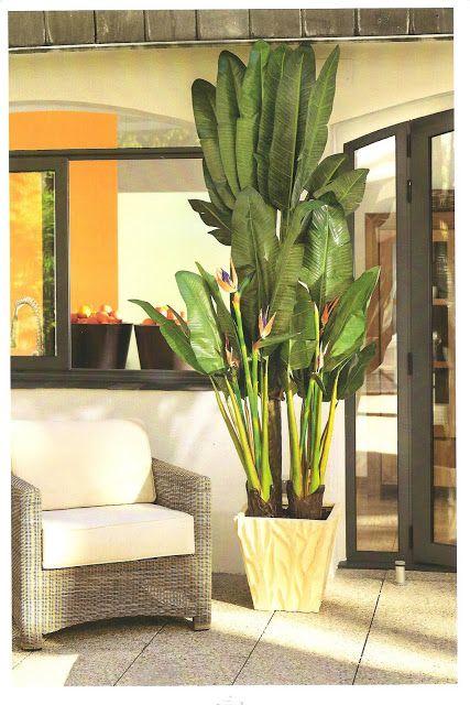 30 best plantas de interiores images on pinterest - Flores artificiales para decorar ...