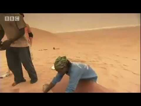 Extreme Sand Boarding  - Tropic of Capricorn - BBC travel I tried this in Namibia with this company. Fun Stuff!