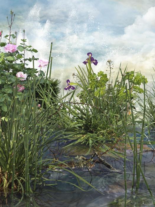 Fotografía nº 2 de la serie 'Alegría en el jardín'. 2011