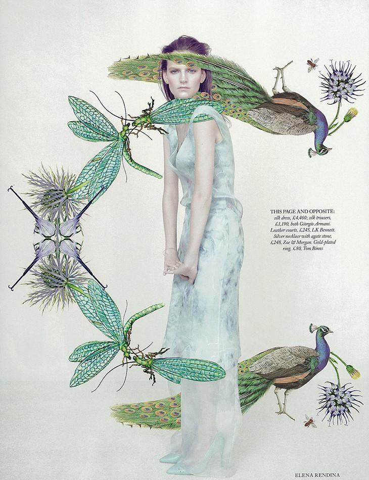 Meadow Sweet (Harpers Bazaar UK)