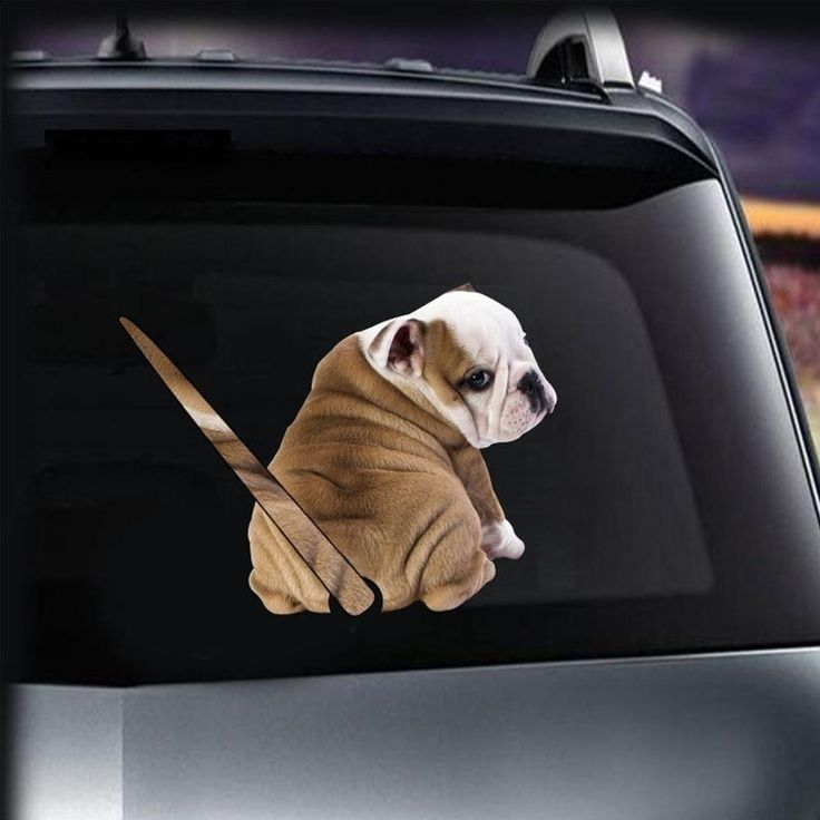 how to put a sticker on a car window