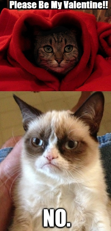 be my valentine grumpy cat no - Grumpy Cat Valentine