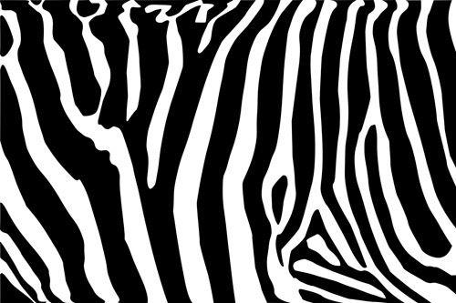 Seepran raidat ovat usein mustavalkoisena inspiraationa.