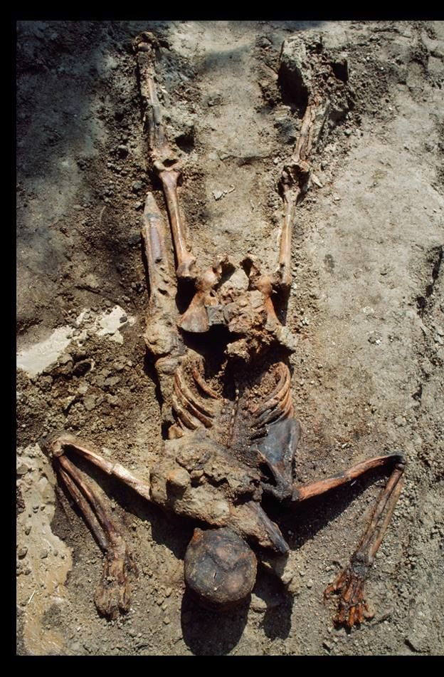 Skeletal remains, instant death by eruption of Mt. Vesuvius in 79 AD, which buried city of Pompeii.  People were preserved by the lack of moisture in the heavy ash that covered the entire city.