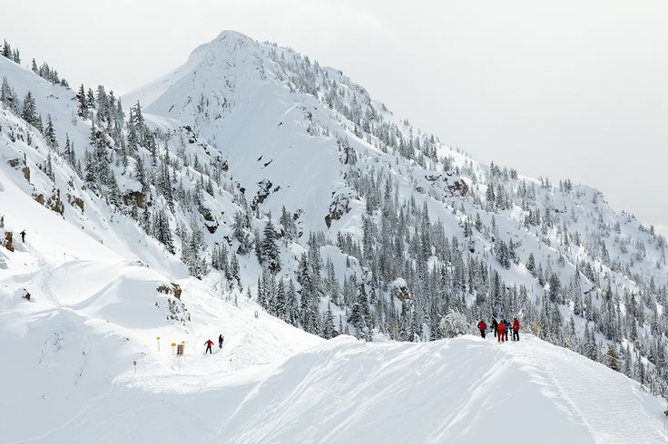 Skiing on Kicking Horse Mountain in Golden, BC.
