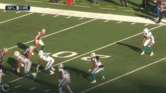 Masshole Sports: GIF: Watch Two Dolphins Tackle Each Other Because Julien Edelman Is Just That Damn Quick...Wes who?