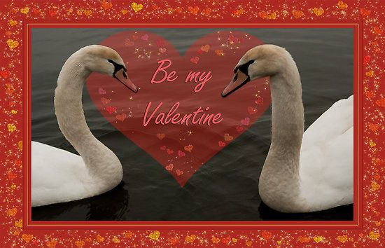 Two Young Swans - Valentine by steppeland Price: €1.96 - Check discounts!