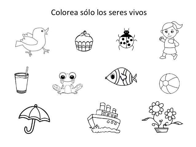Fichas De Seres Vivos Y Seres Inertes Preschool Kindergarten English Games Preschool