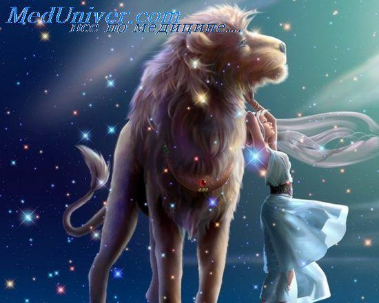 мужчина лев и отношения