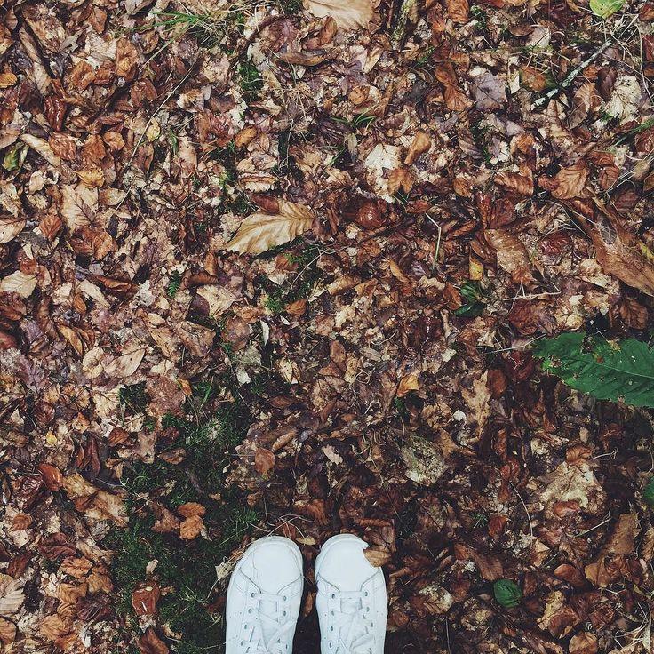 Ho preso finalmente un abbonamento a Netflix.  Ho cominciando facendo una maratona di Gilmore Girls ma per evitare di passare i mesi bui in uno stadio di semierimitismo ho deciso di uscire dopo mangiato per prendere aria. L'unico problema è che vado nei posti meno frequentati.  L'unica cosa che mi fa sopportare un pomeriggio di revisioni è l'organizzazione del prossimo viaggio  _________________________  #whereistand #iphoneography #autumn #fall #sweatherweather #samhainiscoming #traveling…