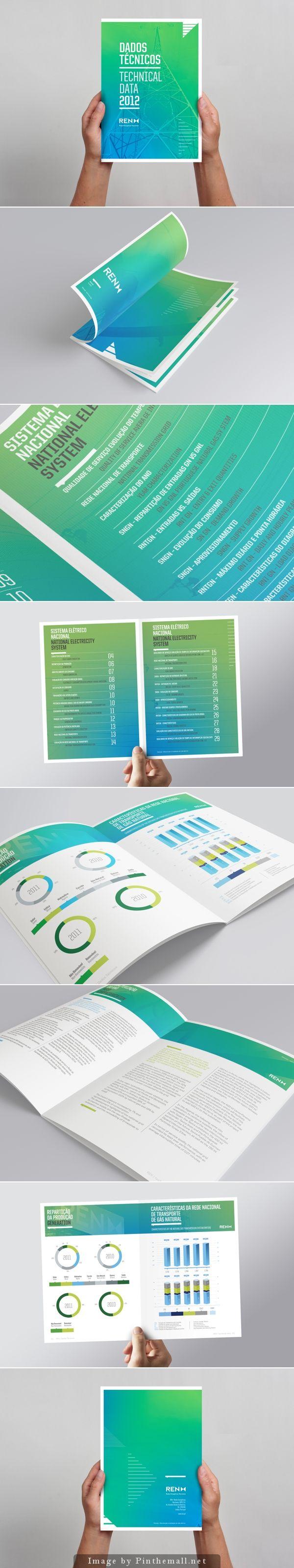 REN Technical Data 2012 by Julio Ferreira