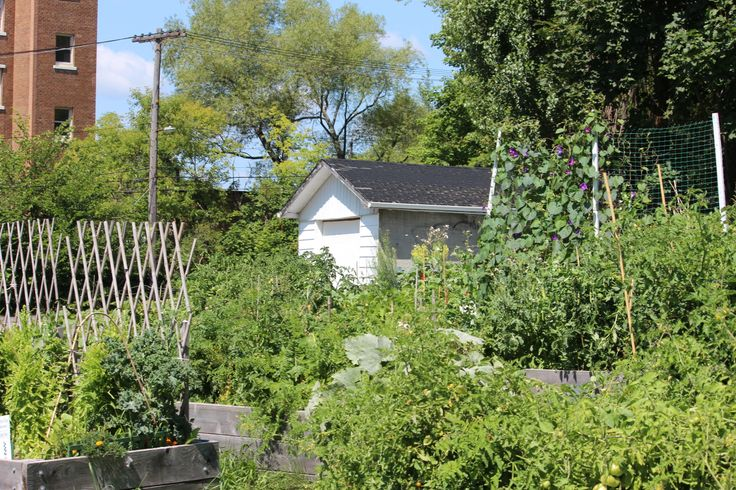 Can hardly wait for the Gardening Season to start.
