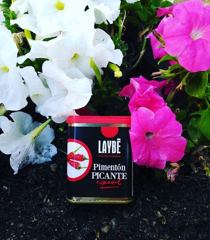 Lata Pimentón Picante Selección Español 80g  Peso neto: 80 g  Ingredientes: Pimiento rojo picante molido.–Fruto maduro procedente de «Capsicum annuum.»,  Origen: España  Presentación: Molido