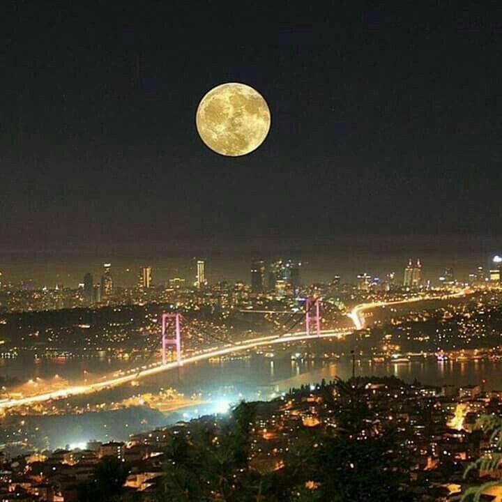 İstanbul /Turkey