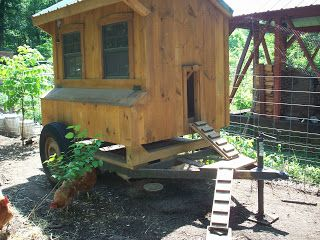 4 acres and a stream: Moving the animals and the hoop house