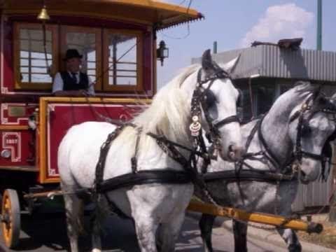 PASAREA COLIBRI - Hei tramvai !.avi - YouTube