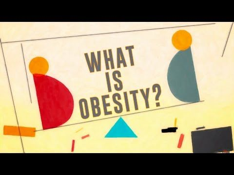 modern global epidemic of obesity But my time as the executive director of the global obesity prevention center at  the johns hopkins bloomberg school of public health has led.