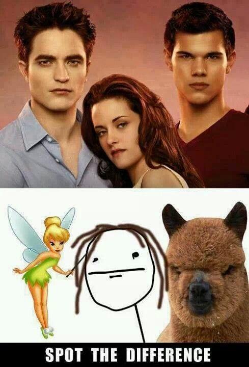 Alpaca porn