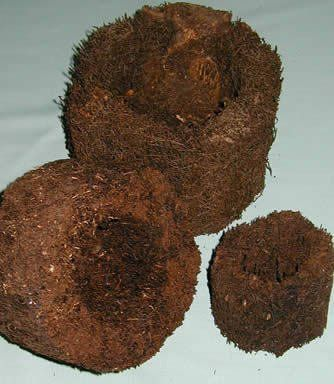 Tree Fern Round Pot 4-inch perfect for orchid plants, and others [TFS001] AuSableBotanicals.com http://www.amazon.com/dp/B0098MEPL6/ref=cm_sw_r_pi_dp_2hNuvb16X8GZ3