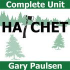 gary paulsens novel hatchet essay This is a final examination of gary paulson's classic novel consisting of 10 multiple choice questions, 10 short answer questions, and 10 short essay.
