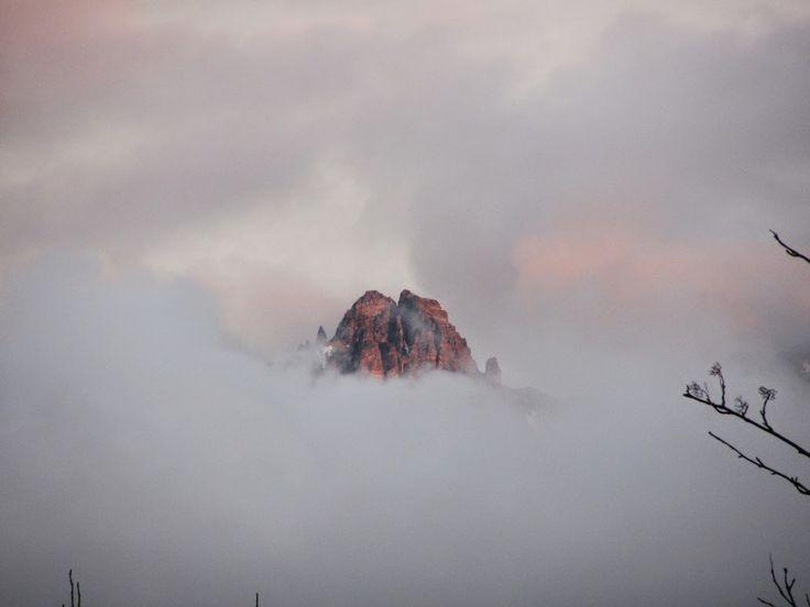 FilzGarten: In Heaven: ... und im Nebel