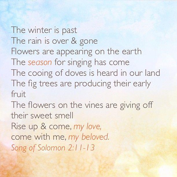 Song Of Solomon 2:11-13 #spring #songofsolomon