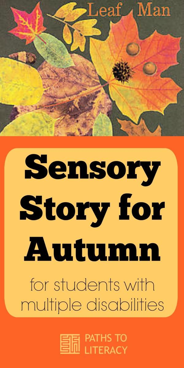 The Leaf Man makes a great sensory story for autumn for students with multiple disabilities.