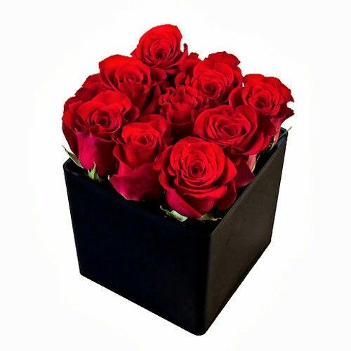 Κόκκινα τριανταφυλλα | σε μαύρο κύβο | αποστολη λουλουδιων | για δώρο από το ανθοπωλείο ανθέμιο. ΑΠΟΣΤΟΛΗ ΛΟΥΛΟΥΔΙΩΝ ΑΘΗΝΑ | SEND FLOWERS TO GREECE | ΔΩΡΑ ΑΓΙΟΥ ΒΑΛΕΝΤΙΝΟΥ | ΛΟΥΛΟΥΔΙΑ ONLINE | ΔΩΡΑ ΓΙΑ ΕΚΕΙΝΗ | ΠΑΡΑΓΓΕΛΙΑ ΛΟΥΛΟΥΔΙΩΝ | ΔΩΡΑ ΓΙΑ ΕΚΕΙΝΩΝ | ΔΩΡΑ ΓΙΟΡΤΗ ΕΡΩΤΕΥΜΕΝΩΝ