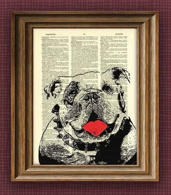 ENGLISH BULLDOG  bull dog beautifully upcycled by collageOrama, $7.99
