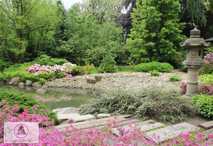 Ogród japoński - Wrocław, Polska: Ogród Dalekowschodni, Ogród Japoński