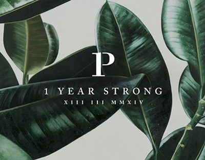 1 Year Strong logo, on a lovely moody and dark tropical background.