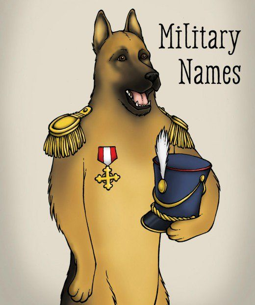 Meaningful names for male and female German shepherds from history, the military, and the arts and sciences. Also appropriate for other German breeds such as the Doberman and Rottweiler.