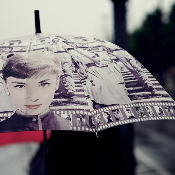 Shop hundreds of unique, quirky and classic Umbrellas online! Shipping available worldwide to your door. Buy now and save on your next umbrella.