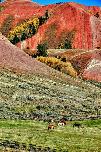 The Red Hills, Grand Teton National Park ~ Nearby Vacation Rental Lodging in Jackson Hole, Wyoming & Big Sky, Montana:  http://AffordableYellowstoneRentals.com