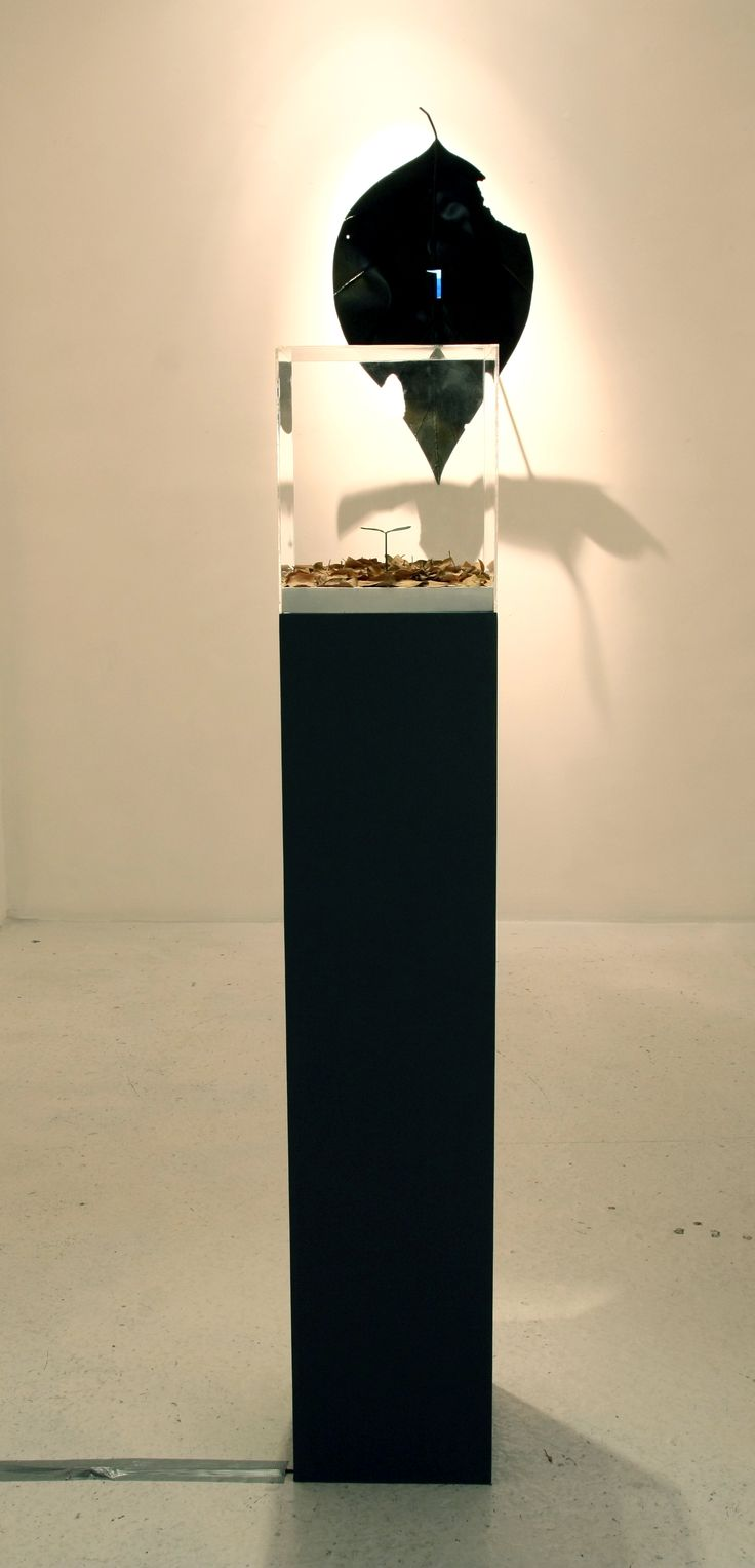 """Sun-Hyuk Kim, View of the exhibition.  installation """"A movement to be modest"""", sculpture """"From petty things"""", 2014. Courtesy of the artist & ONEIRO gallery"""
