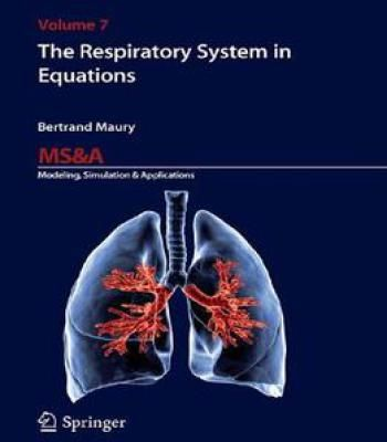 The Respiratory System In Equations PDF