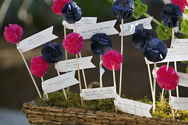 Pink and blue poms as escort cards.