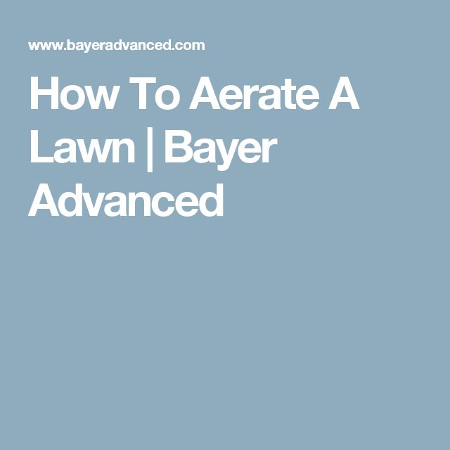 How To Aerate A Lawn   Bayer Advanced
