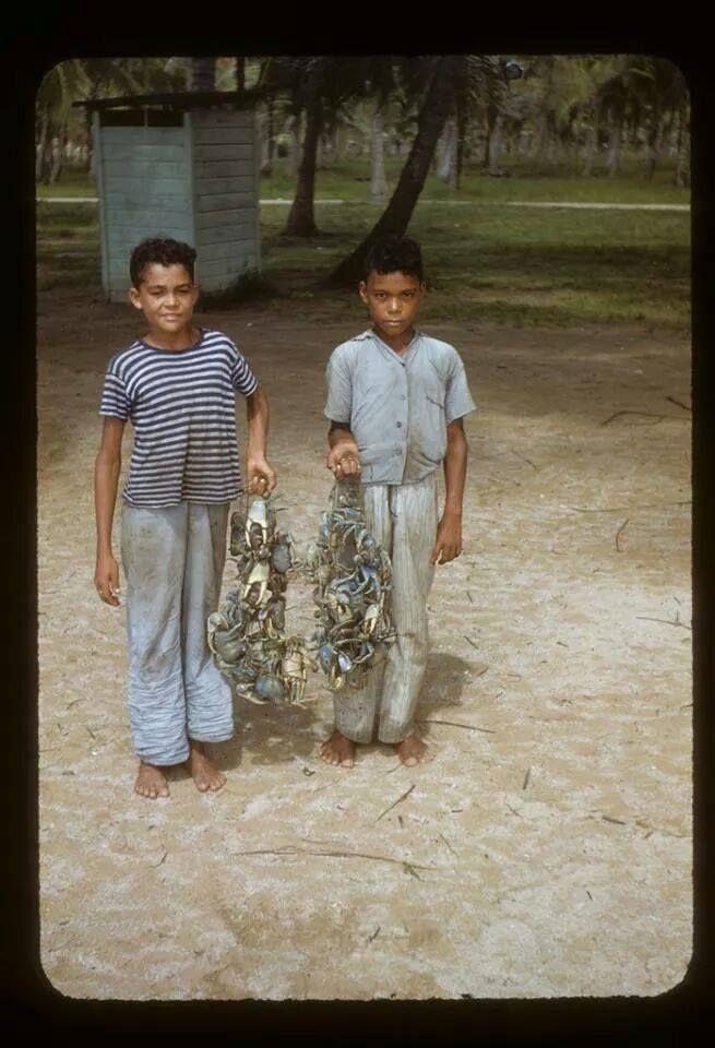 Niños vendiendo jueyes 1955, Puerto Rico